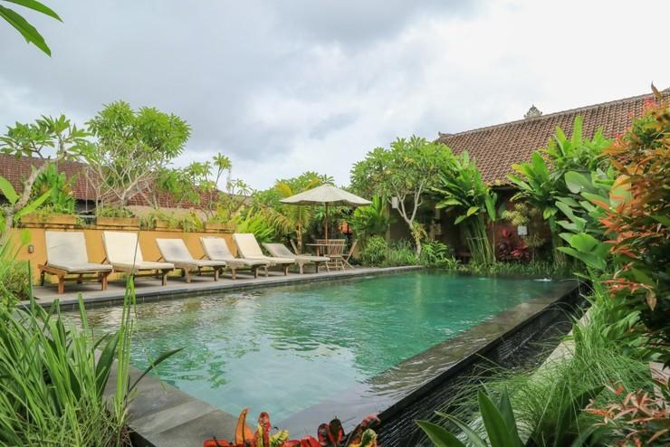 Bali Sunshine Homestay Ubud Bali - Swimming Pool