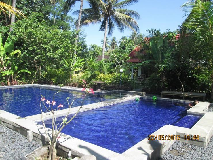 Air Sanih Homestay Bali - Swimming pool