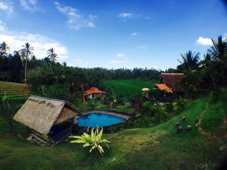 Bali Lush Bali - Featured Image