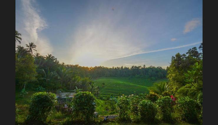 Bali Lush Bali - Guestroom View