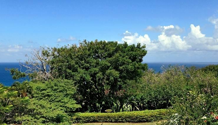 Villa Karang Selatan Bali - Pemandangan