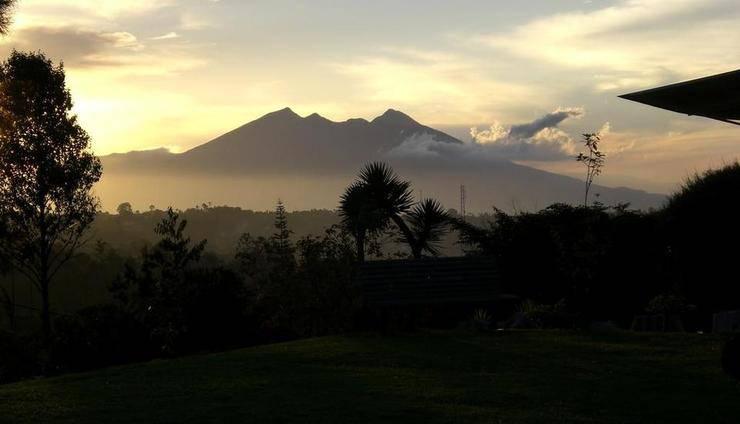 Villa Tjokro Bogor - Pemandangan