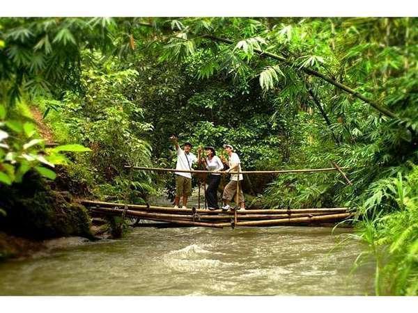 Kayumanis Ubud - Kegiatan trekking