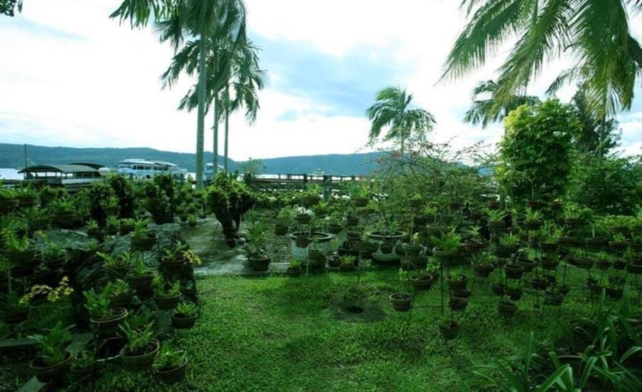 Hotel Silintong Samosir - Taman