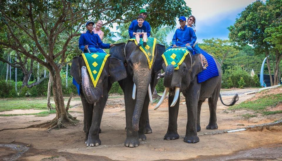 Nirwana Resort Hotel Bintan - Jumbo Park Elephant Ride