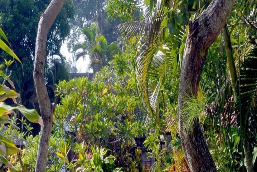 Puri Kelapa Garden Sanur - Taman