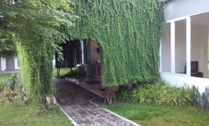 NIDA Rooms Bangka Jenderal Sudirman Bangka - Pemandangan Area