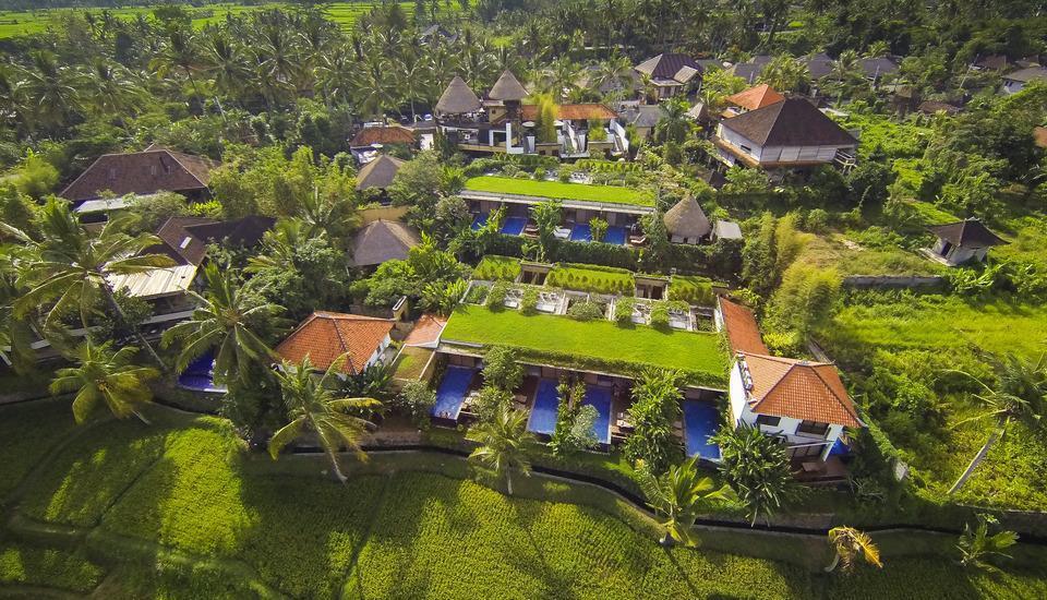 Ubud Green Ubud - area