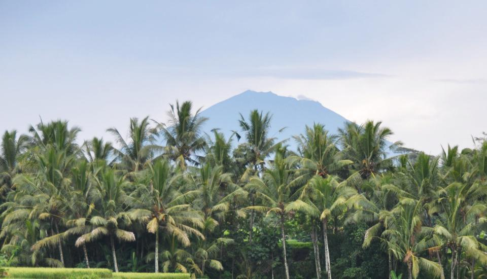 Ubud Green Ubud - Gunung Agung