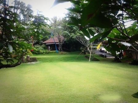 Bumi Cikeas Hotel Bogor - Yard