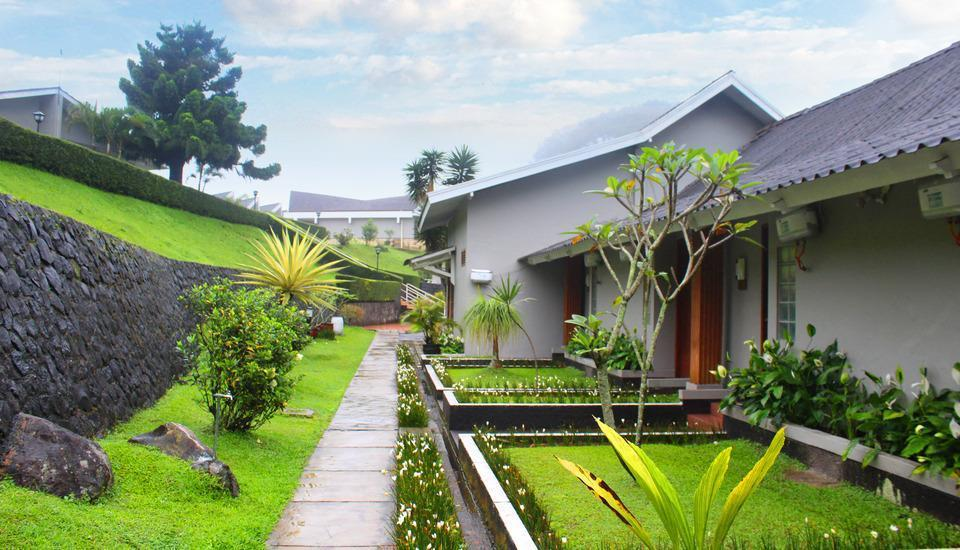 Hotel Ariandri Puncak Bogor - taman