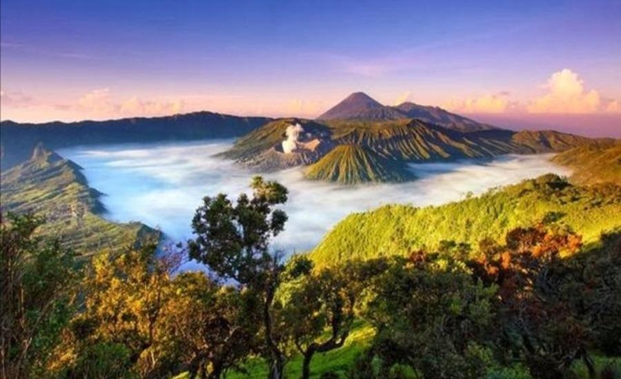 Homestay Ngadisari Cantik @ Bromo Probolinggo - Lingkungan Sekitar