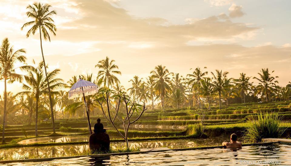 Hati Padi Cottages Bali - Lapangan padi