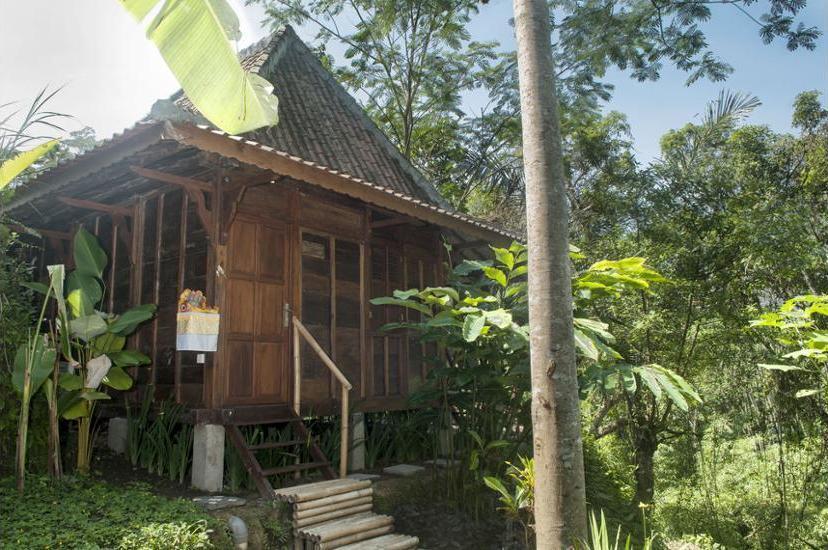 DD Ubud Villa Bali - Guestroom View