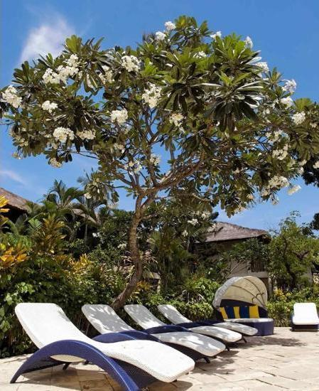 Mercure Resort Sanur - Sundeck