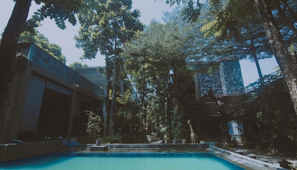 Savita Inn Yogyakarta - Pool