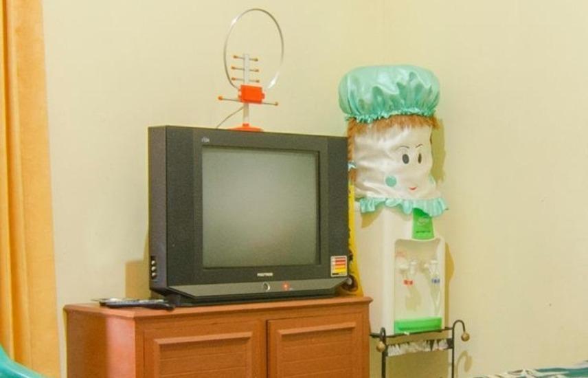Dini Homestay Malang - TV