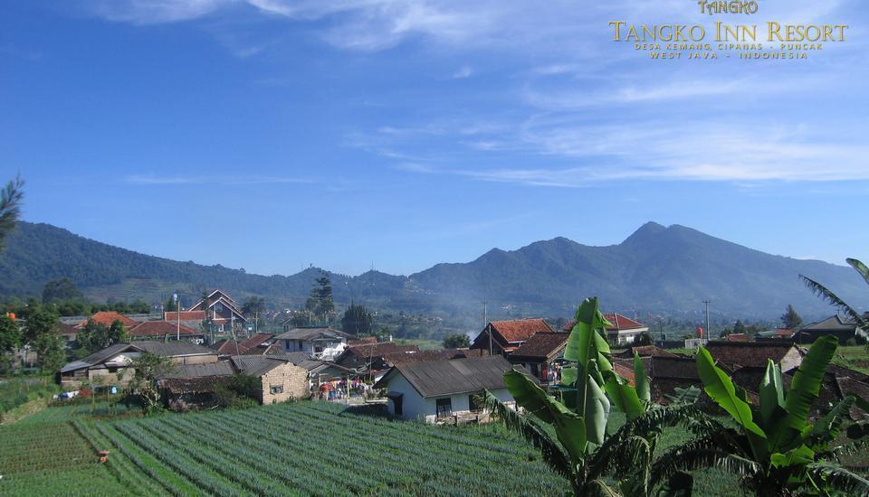 Tangko Inn Resort Cianjur - Gunung