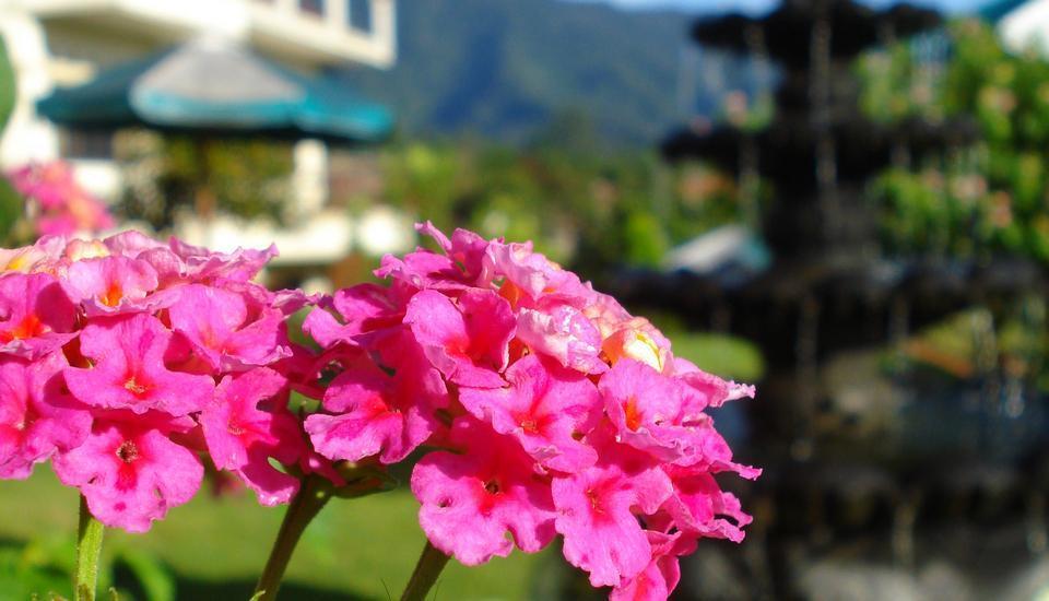Tangko Inn Resort Cianjur - Air mancur
