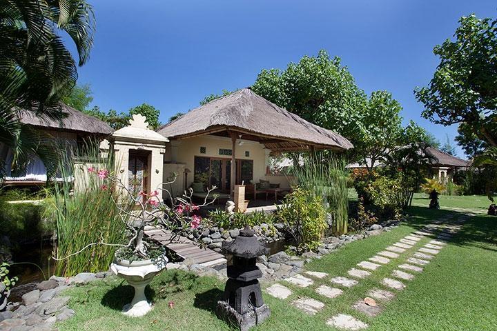Taman Sari Bali Resort Bali - Frog (19/June/2014)
