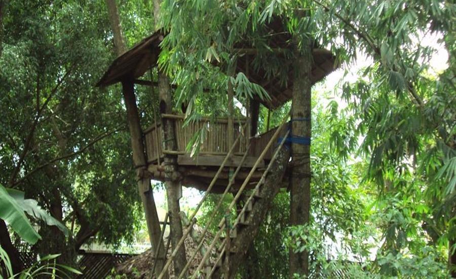 Bukit Raya Guesthouse Palangkaraya - Eksterior