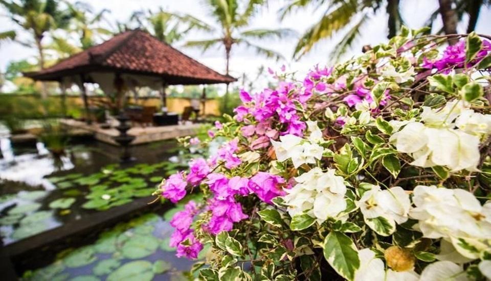 Vision Villa Resort Bali - exterior