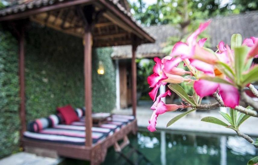 D Omah Hotel Yogjakarta - Kolam Renang