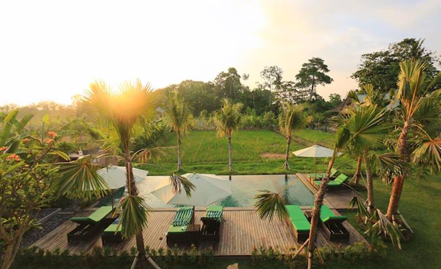 Tinggal Elite at Ubud Monkey Forest - Pemandangan