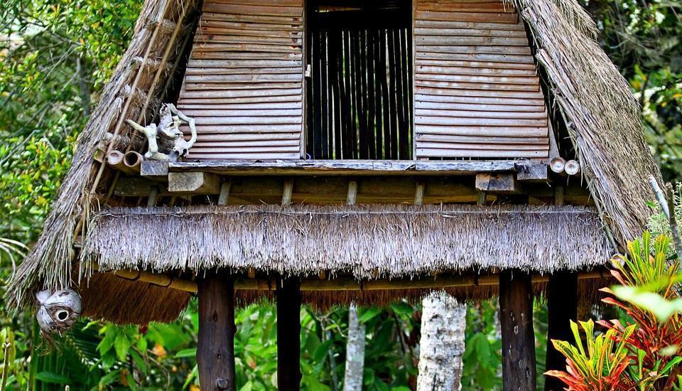 Nandini Jungle Resort Bali -