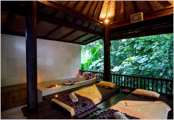 Alam Ubud Culture Villa   - Spa