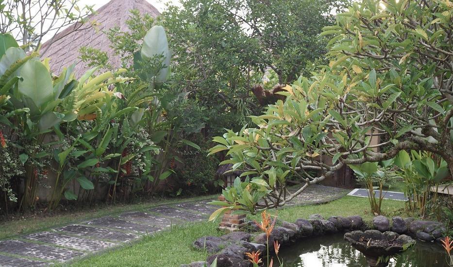 Villa Bintang Ubud Bali - view
