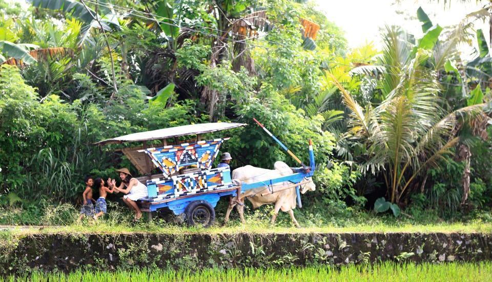 Sambi Resort Yogyakarta - kegiatan