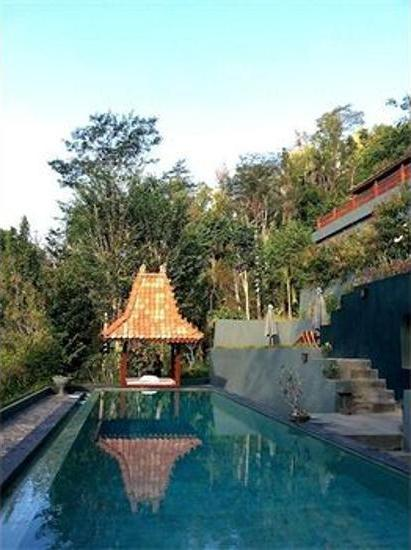 Villa Borobudur Magelang - Outdoor Pool