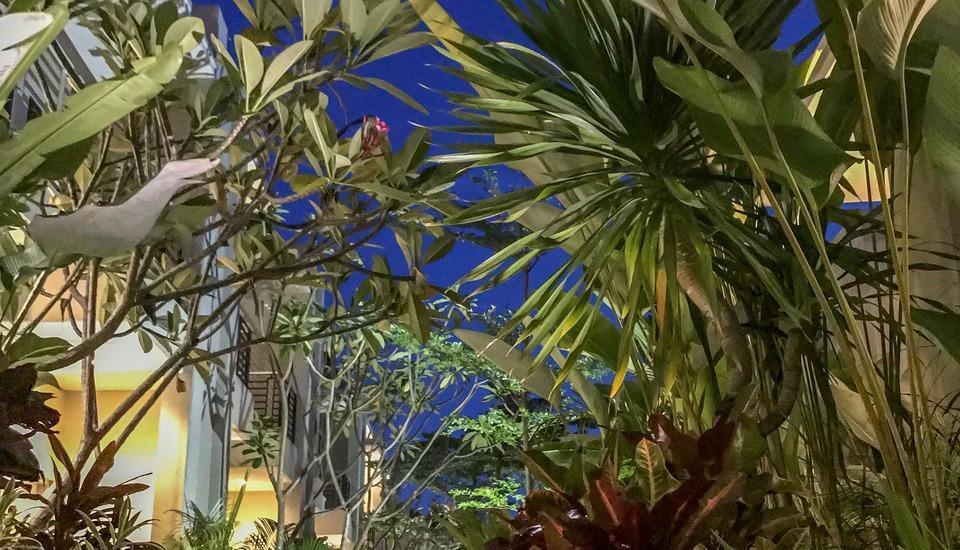 Graha Ayu Hotel Lombok - outdoor