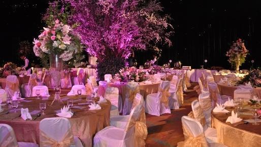 Hotel Aryaduta Palembang - Grand Ballroom