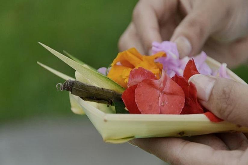 Puri Sebatu Resort Bali - Kegiatan