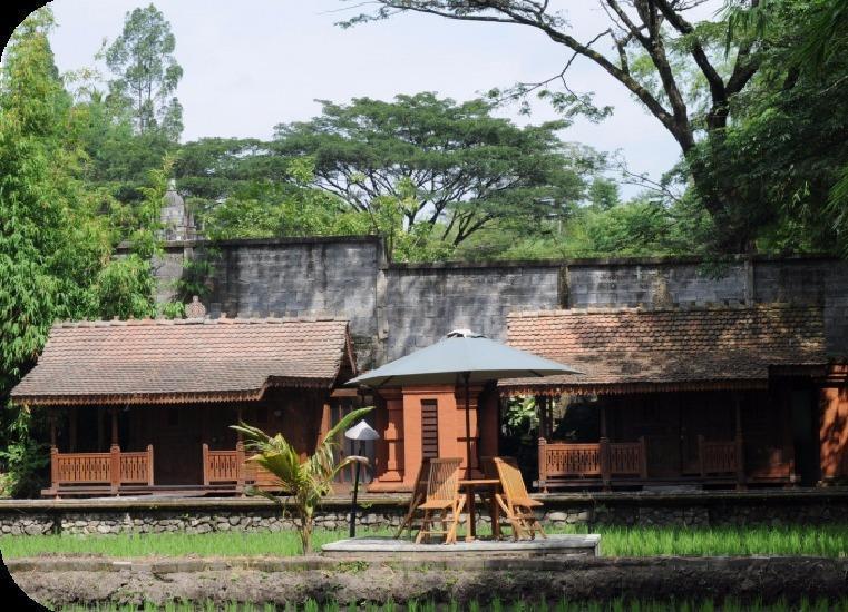 Padi Heritage Hotel Malang - pemandangan
