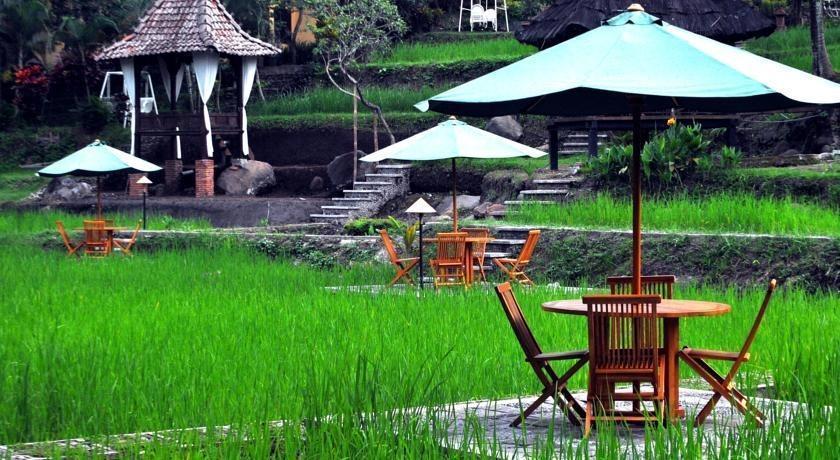 Padi Heritage Hotel Malang - Sawah