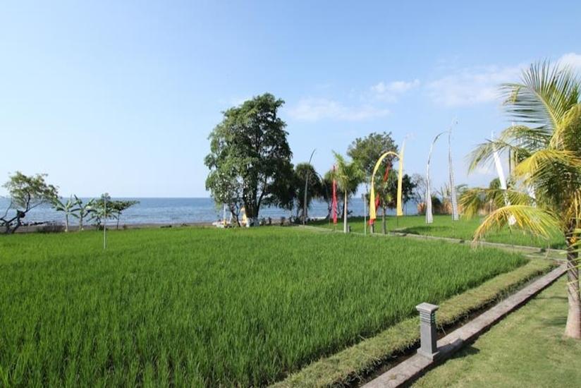 Ganesha Coral Reef Villas Bali - Eksterior