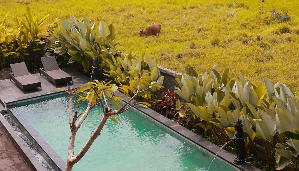 Uma Kutuh Bungalow Bali - Kolam Renang