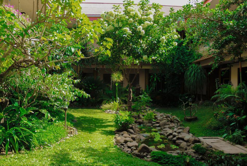 Hotel Indra Toraja - Garden