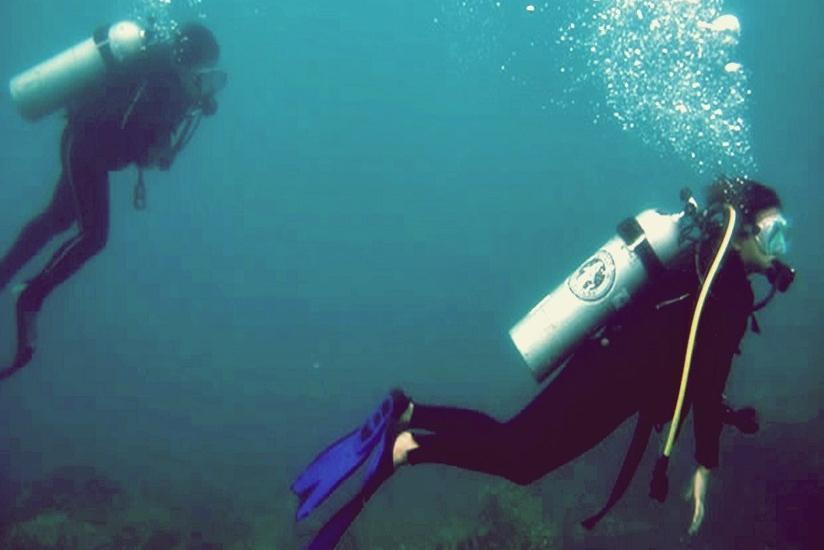 Arys Lagoon Karimunjawa Jawa Tengah - Menyelam