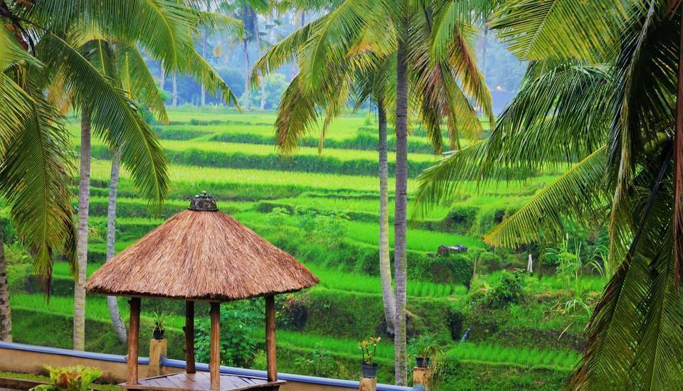Junjungan Suite Villa Bali - Pemandangan