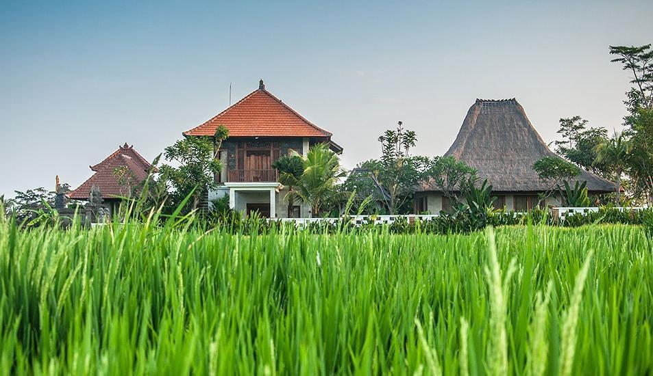 Dewarka Villa Bali - Lingkungan
