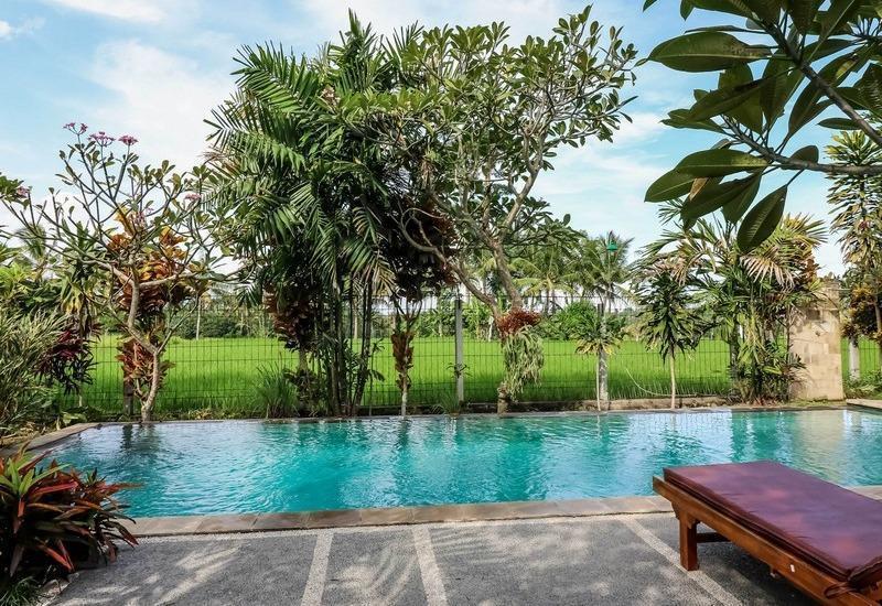NIDA Rooms Katik Lantang Ubud Bali - Kolam Renang