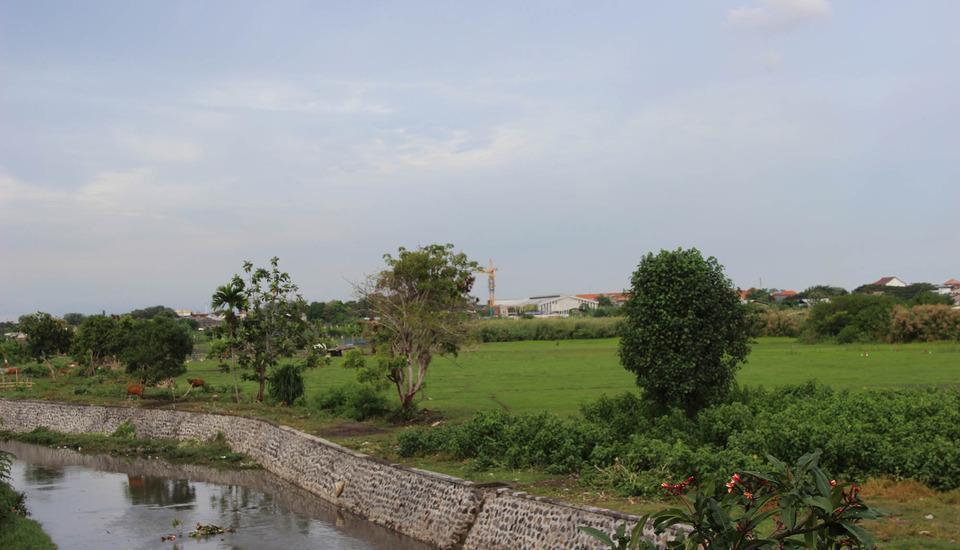 Beji Ayu Homestay Bali - Pemandangan