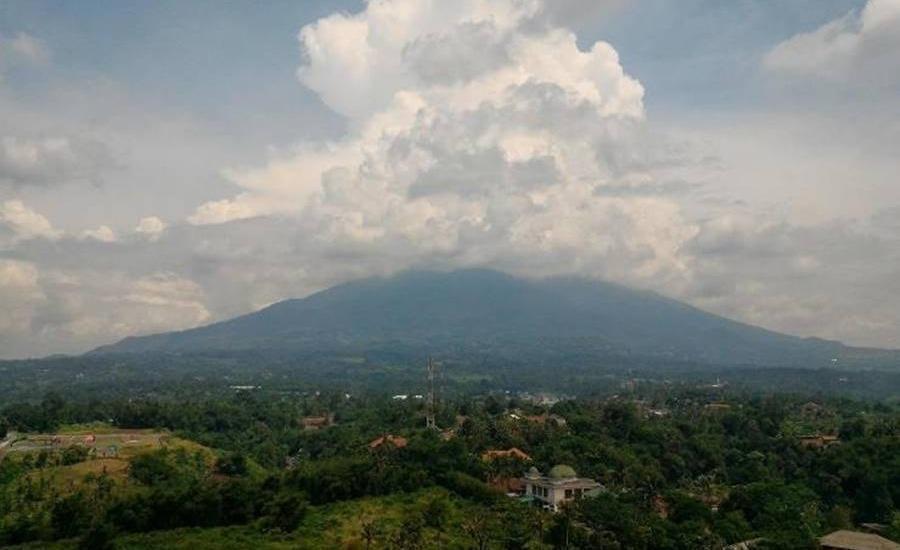 The Forest Hotel Bogor - Pemandangan