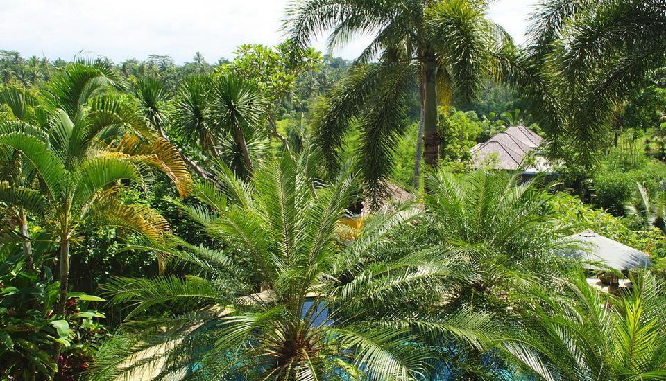 Bunga Permai Hotel Bali - Pemandangan