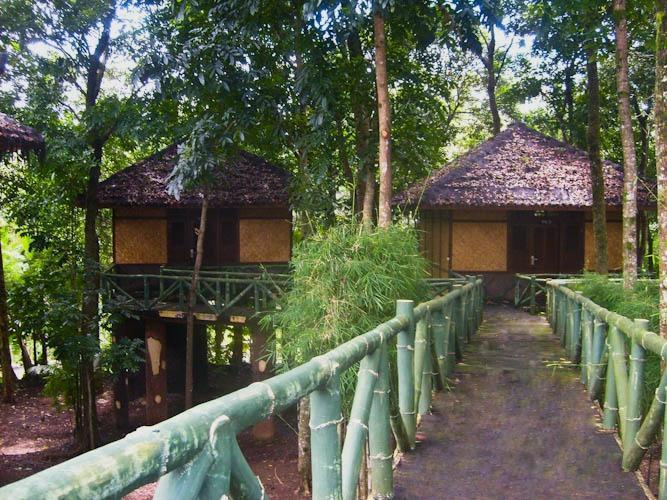 Resort Prima Sangkanhurip Kuningan - Rumah pohon