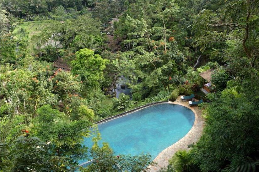 Royal Pita Maha Ubud - Infinity Pool